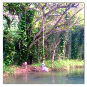 Waiipo falls